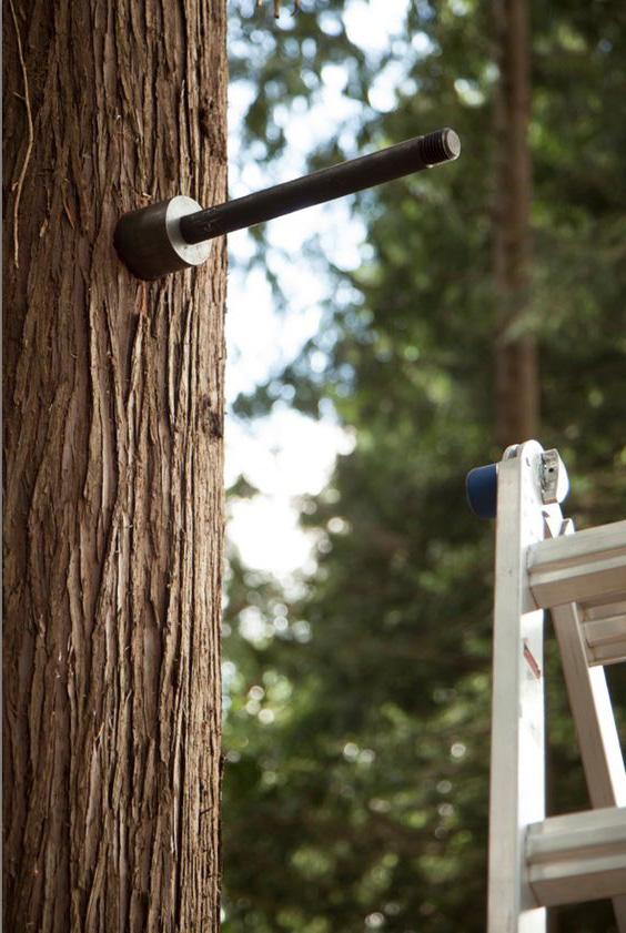 Дома на деревьях крепления