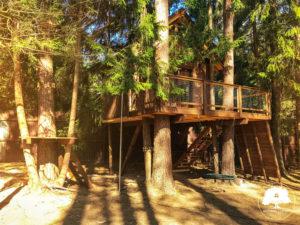 дом на дереве москва мск